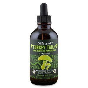 Turkey tail mushroom, medicinal mushrooms